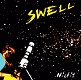 NICFIT/SWELL