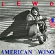 LEWD/AMERICAN WINO