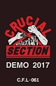 CRUCIAL SECTION/DEMO 2017 (LTD.300)