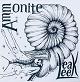 Leak Leek/Ammonite (LTD.300)