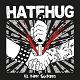 HATEHUG/ALL THEM SUCKERS (LTD.300)
