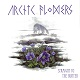 ARCTIC FLOWERS/STRAIGHT TO THE HUNTER