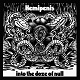 Hemipenis/into the doze of null