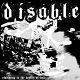 DISABLE/...SLAMMING IN GTGHE DEPTHS OF HELL (LTD.500)