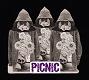 PiCNiC/S-T