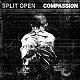 SPLIT OPEN // COMPASSION/DEMO SPLIT (LTD.300 BLACK VINYL)