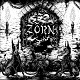 ZORN/HARDCORE ZORN (LTD.500)